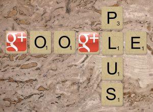 google-plus-1007069_640